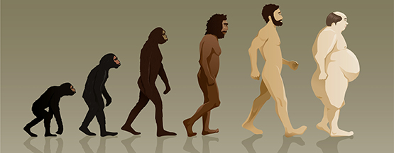 human-evolution_wide_pp