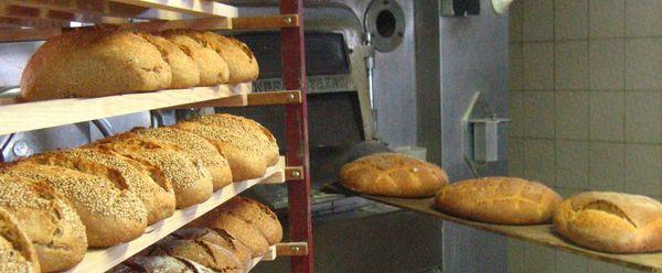 Un mundo de pan