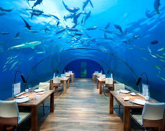 Restaurante-Ithaa