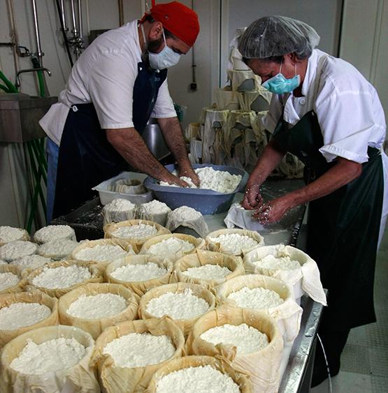 En la quesería La Cabezuela