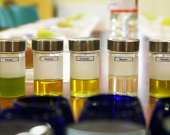 aceites-de-oliva-defectuosos-3