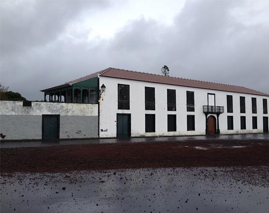 """Alquimia en Isla de Pico: el vino """"licoroso"""" Lajido"""