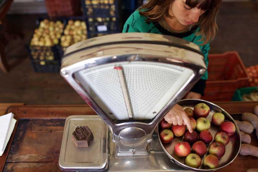fruta-feia-balanza