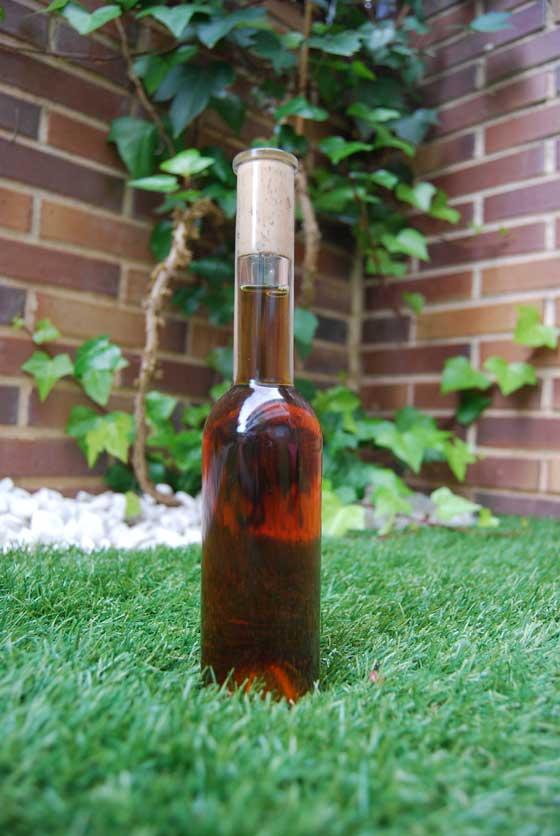 vino-tostado-botella