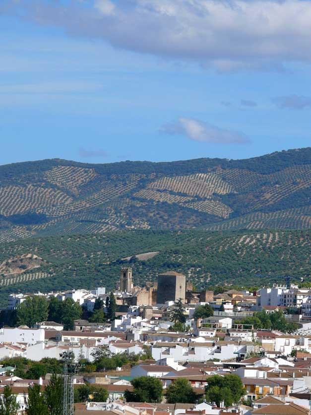 Reino Picudo