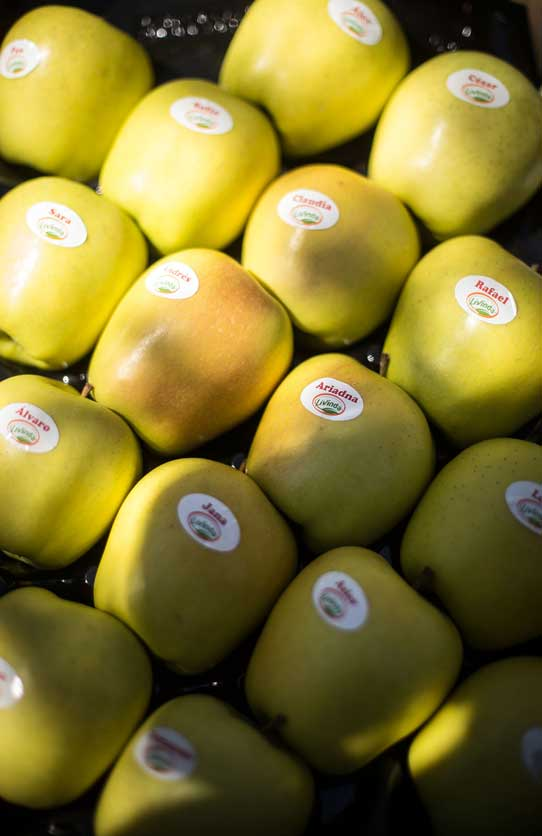 el-eden-manzanas-nombres